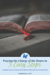 photograph relating to Printable Liturgy of the Hours Guide titled Pray the Liturgy of the Several hours inside A few Uncomplicated Measures