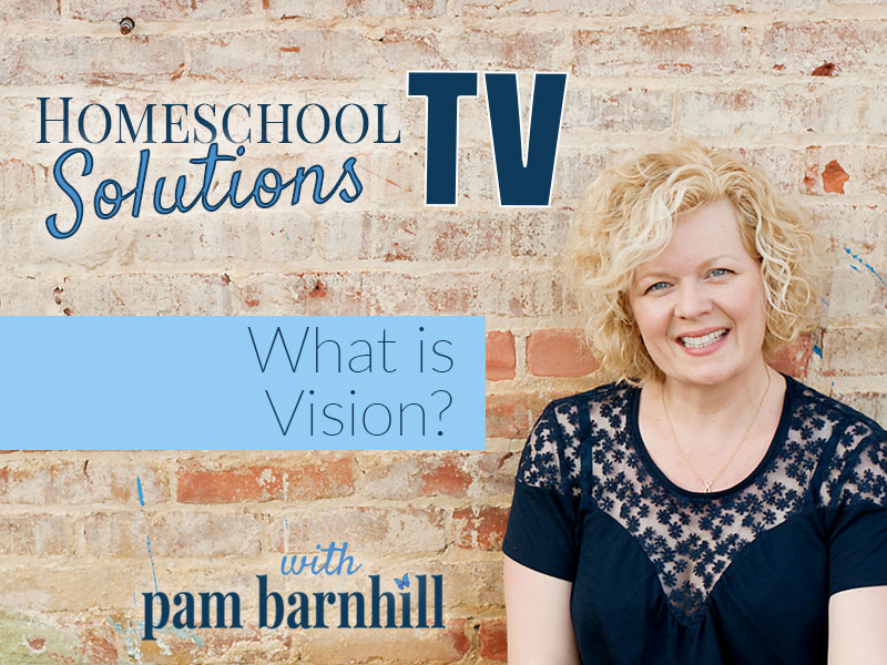 HSTV Planning 2018: What is Vision?